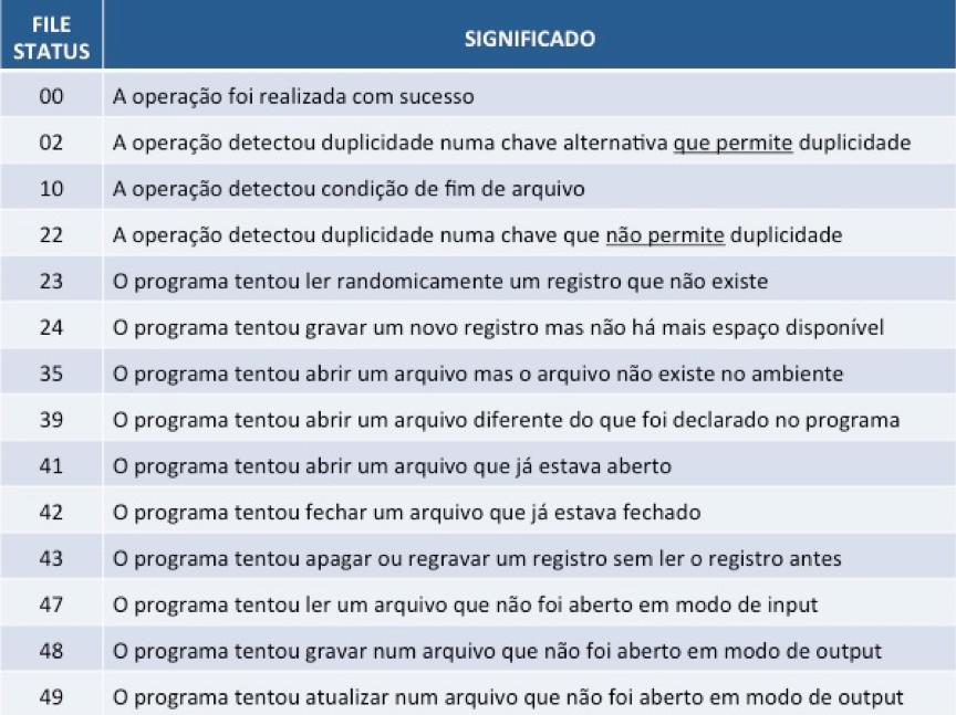Cobol: File Status