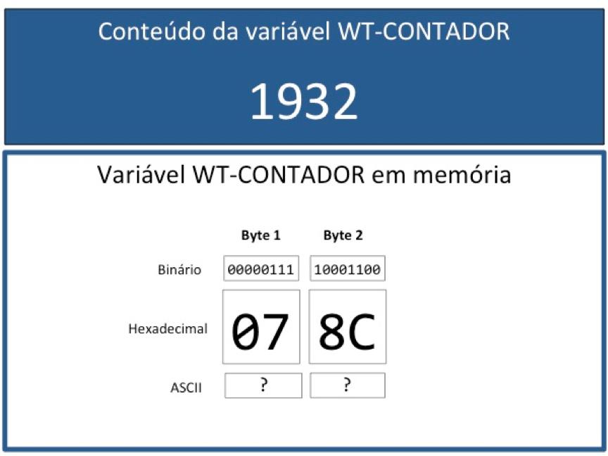 Cobol: Campo binário com valor positivo